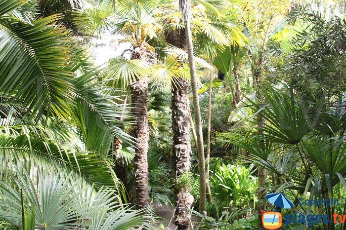 Jardin Georges Delaselle - Ile de Batz