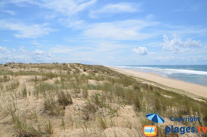 Plage de Jenny - une plage infinie de sable