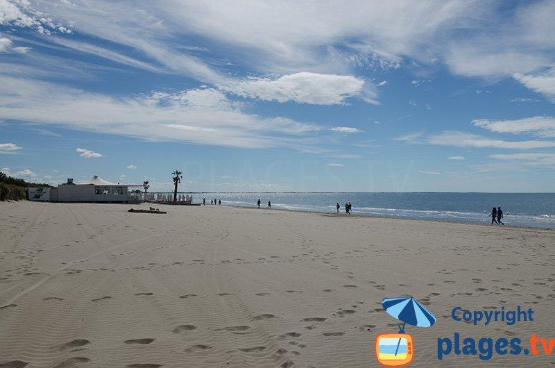 La Grande Motte et sa plage pour les chiens