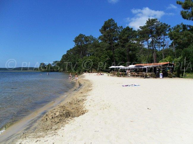 Lac de Cazaux avec une plage de sable