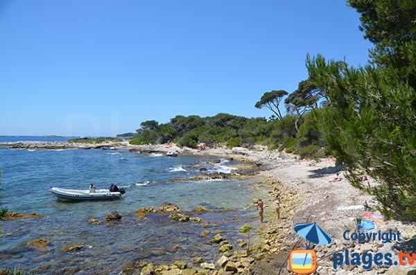 Crique sur l'ile de Sainte Marguerite - Lérins