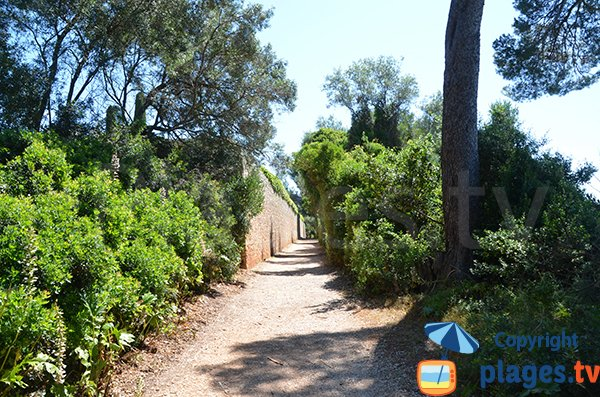 Sentier de l'ile de Sainte Marguerite à proximité du Grand Jardin