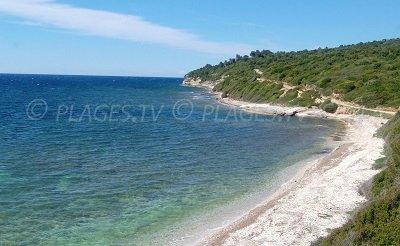 Patrimonio in Corsica