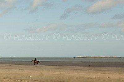 Pennedepie coastline in Normandy