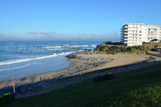 Miladi - Biarritz