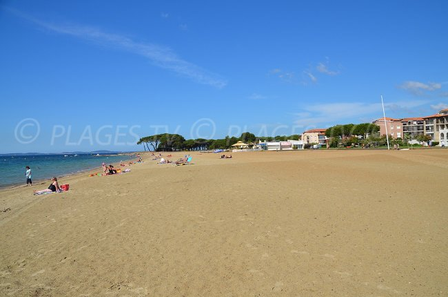 Miramar Beach with its pine forest - La Londe - France