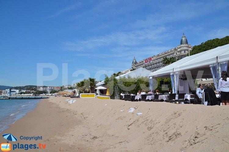Dunes de Cannes sur la Croisette