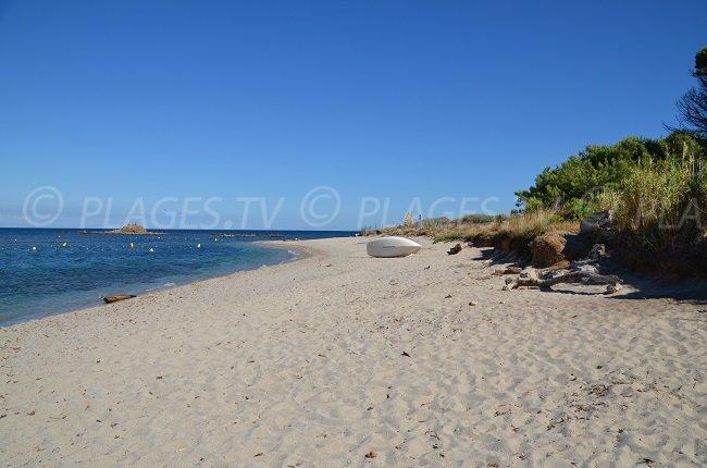 La Moutte: une des plages préférées de PlagesTV dans la baie de St Tropez