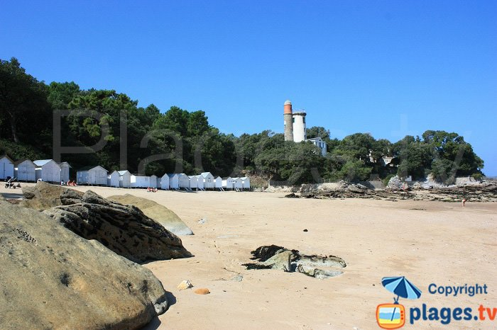 Rouge cove: untame character and the Plantier tower  - Noirmoutier