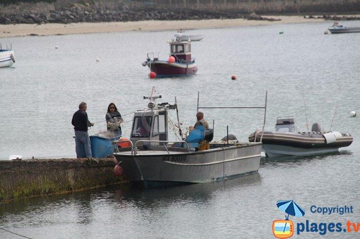 Pêcheurs sur l'ile de Batz