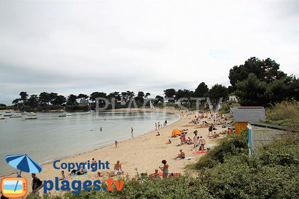 Belle plage à Damgan