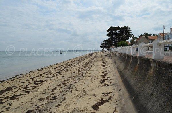 Petite Plage in Saint Trojan les Bains in Oleron in France