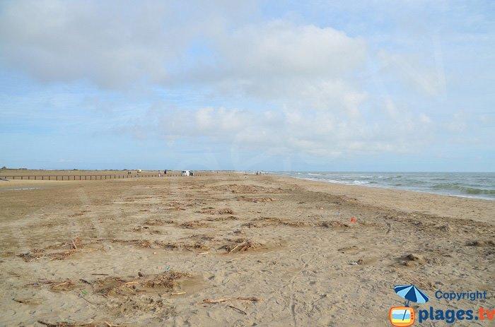 Grande plage en Camargue - Piémanson
