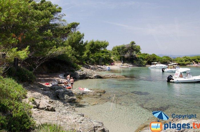 La pinède des Embiez avec ses plages