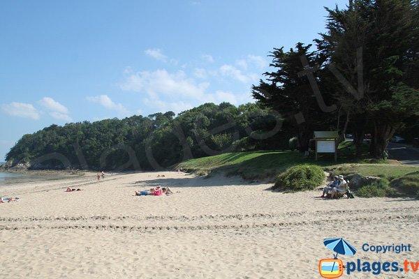 Pelouse sur la plage des 4 Vaux