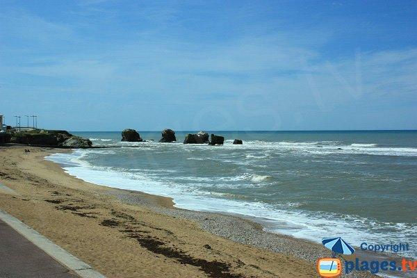 5 Pineaux beach in Saint Hilaire de Riez