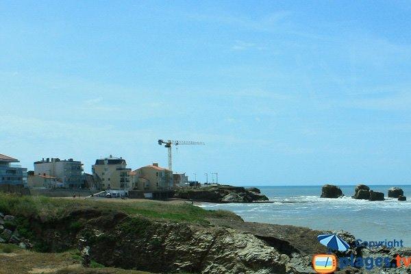 Photo of 5 Pineaux beach in Saint Hilaire de Riez - France