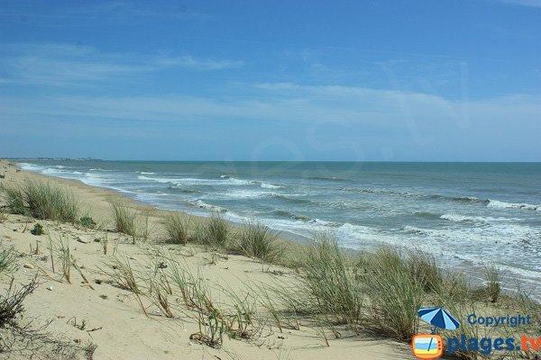 60 Bornes beach near St Hilaire