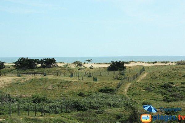 Environnement de la plage des 60 Bornes