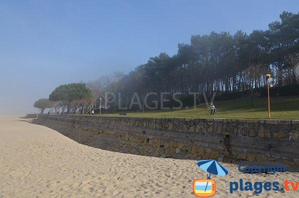 Brouillard sur la plage des Abatilles - Arcachon