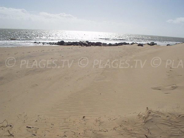 Plage Les Acacias à Grière à La Tranche sur Mer