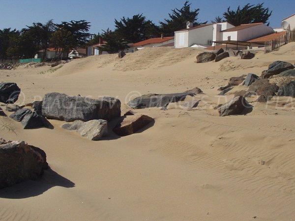 Environnement de la plage des Acacias à La Tranche sur Mer