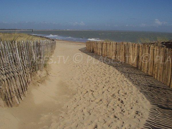 Chemin d'accès à la plage des Acacias à La Tranche sur Mer