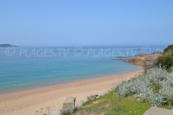 Plage sauvage d'Agosta en Corse