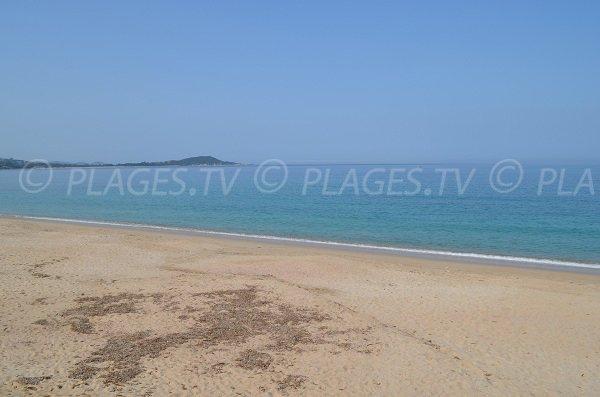 Plage de sable d'Agosta en Corse