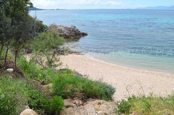 All'estremità sud della spiaggia di Agosta - Porticcio