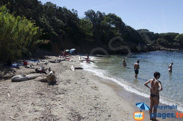 Spiaggia di sabbia a Porquerolles - Francia - Aiguade