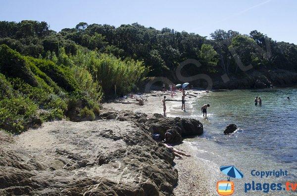 Spiaggia dell'isola di Porquerolles - Aiguade