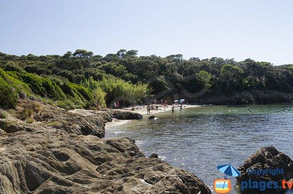 Spiaggia dell'Aiguade a Porquerolles - Francia