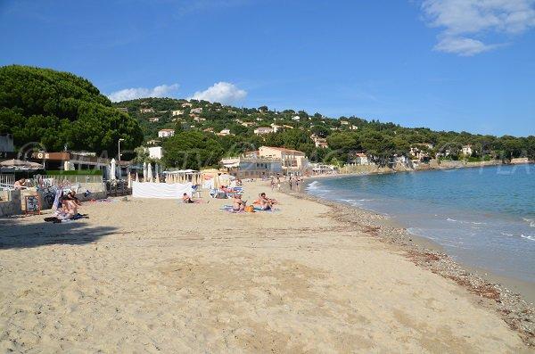 Plage privée sur la plage d'Aiguebelle au Lavandou