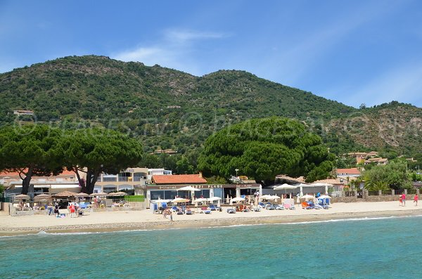 Photo of the Aiguebelle beach in Lavandou