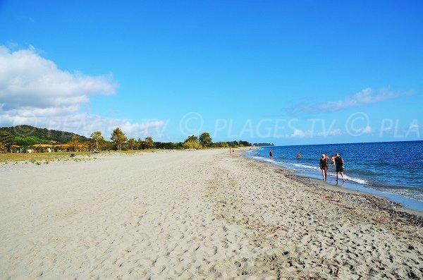 Photo de la plage de Poggio Mezzana - Alba Serena