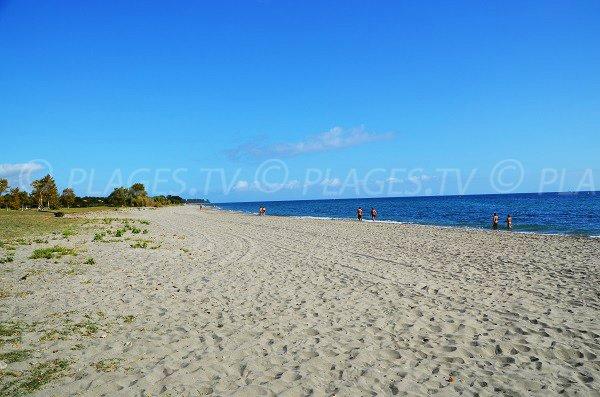 Photo de la plage d'Alba Serena en Corse