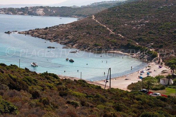 Photo de la plage d'Alga à Calvi