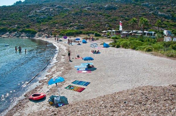 Crique de l'Alga en Corse - Calvi