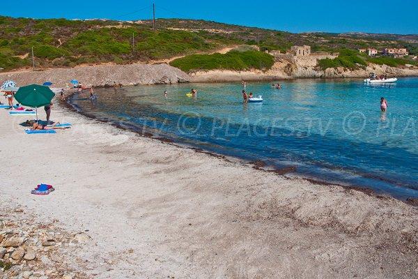 Wild beach in Revellata - Alga Calvi