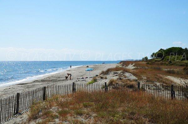 Environnement de la plage Nord d'Alistro