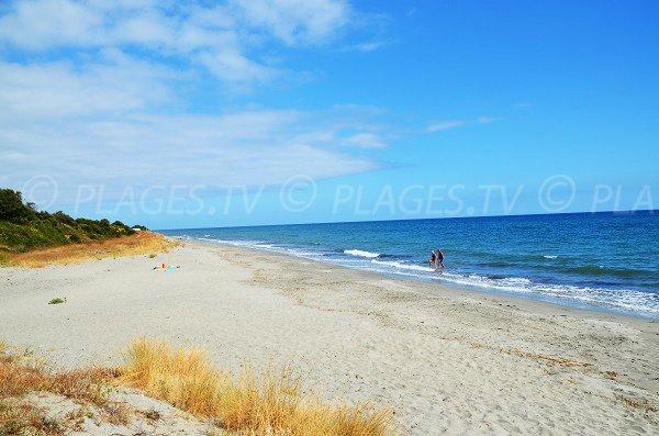 Photo du nord de la plage d'Alistro à San Giuliano - Haute-Corse