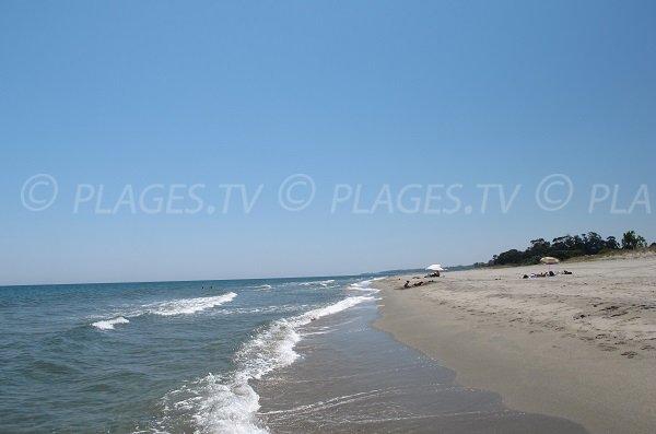 Spiaggia a San Giuliano - Alistro - Corsica