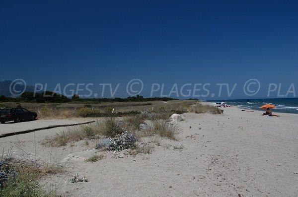 Bord de plage d'Alistro en Corse