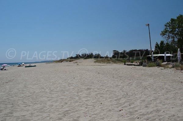 Large plage à San Giuliano en Corse - plage d'Alistro