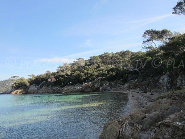 Plage de l'Alycastre sur l'île de Porquerolles