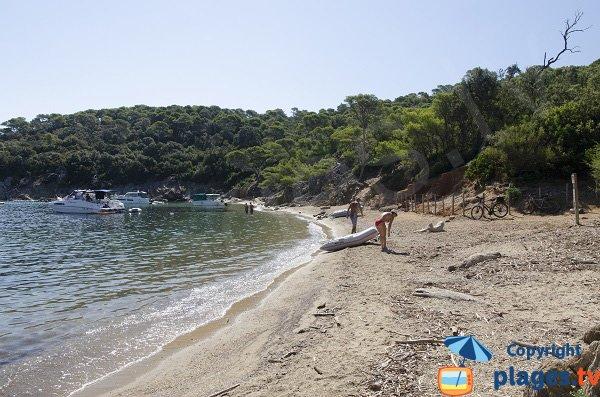 Photo de la plage de l'Alycastre à Porquerolles