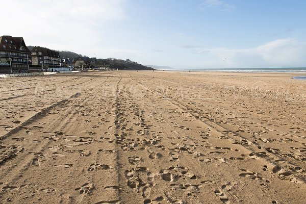 Plage des Ammonites en Normandie (Benerville sur Mer)