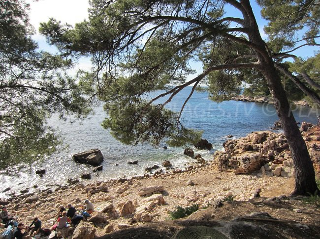 Calanque on the coastal path of Bandol in France