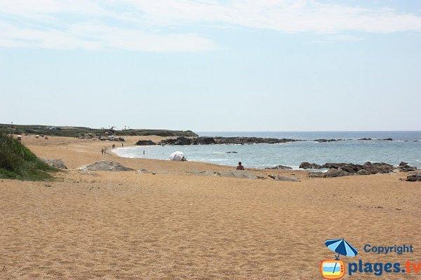 Environnement de la plage de Chaillé - Les Sables d'Olonne